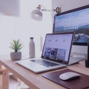 WebSite-uri si eCommerce